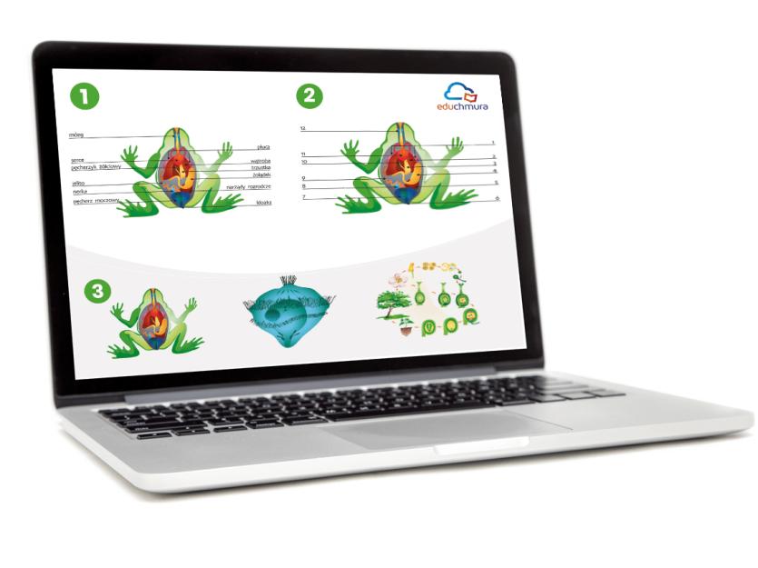 Ei System - Multimedialne ilustracje przedmiotowe. Biologia ponadpodstawowa